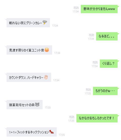 mujirushi_capture2